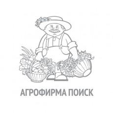 Шпинат Матадор (ЧБ) (ув,размер) 3 г