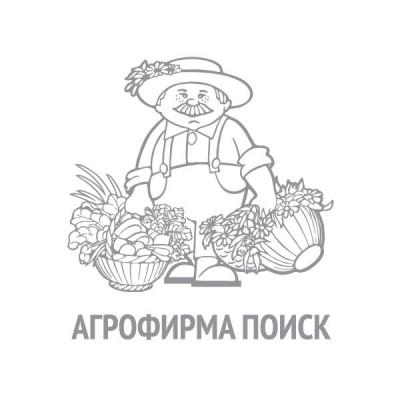 Петрушка Итальянский гигант (ЧБ)(увеличенный размер) 3 г