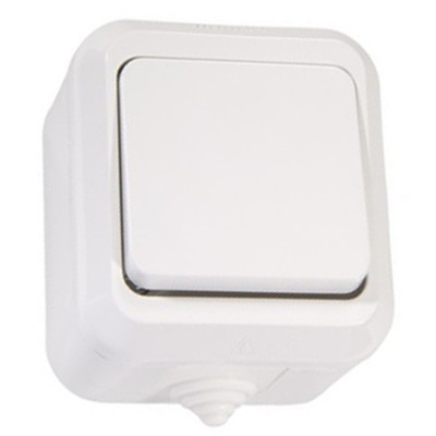 """Выключатель одноклавишный открытой установки IP20 10А, белый """"Ладога"""" TDM"""