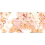 Декор-панно Sunrise многоцветный cherry 88*40*0,9 см (CW2H454DT)