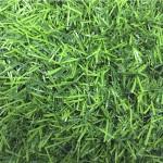 Искусственная трава 25 мм (2х25 м/п)