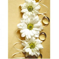 Декоративное панно Альба DECOCODE 21-0281-FE (200х280 см)