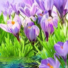 Декоративное панно Дыхание весны 196х201 (6 листов)