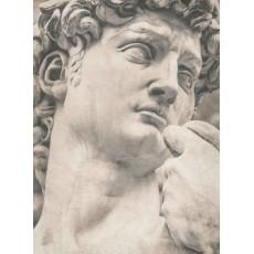 Декоративное панно Скульптура DECOCODE 21-0438-НН (200х280 см)