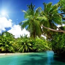 Декоративное панно VIP Мангровые острова 392х260 (16л)