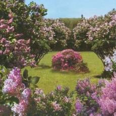 Декоративное панно  Весенний сад 196х201 (6 листов)
