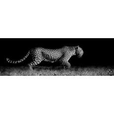 Кухонный фартук  ФФ  600*2000*1,5 мм леопард