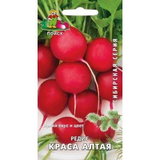Редис Краса Алтая (сибирская серия) (ЦВ) 3 г