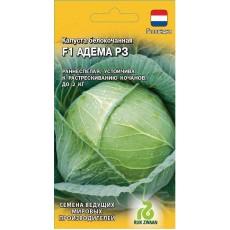Капуста белокочанная  Амтрак F1 10 шт. для хранения (Голландия) H14